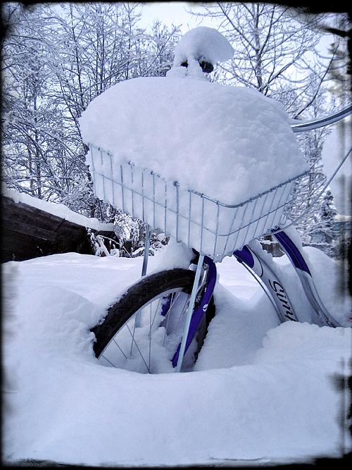 Bike2_8607