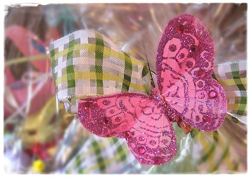 Butterfly2_1877