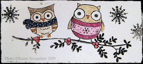 Owls_7332