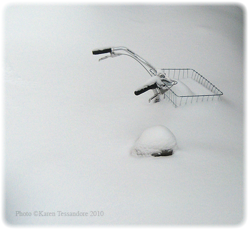 Bike in the snow_9028