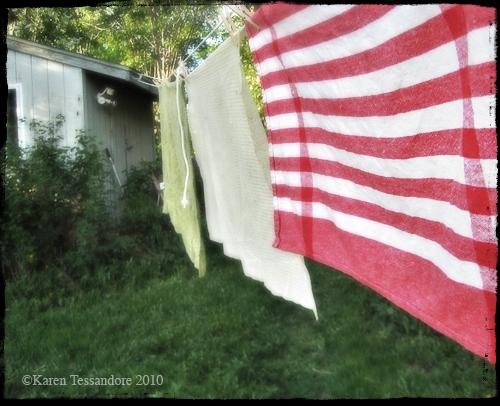 Laundry_0662