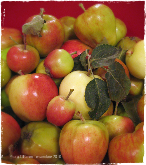 Apples_2445