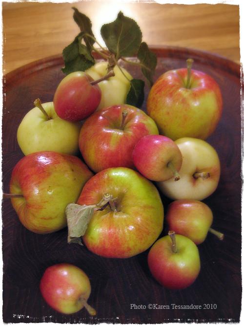 Apples_2421