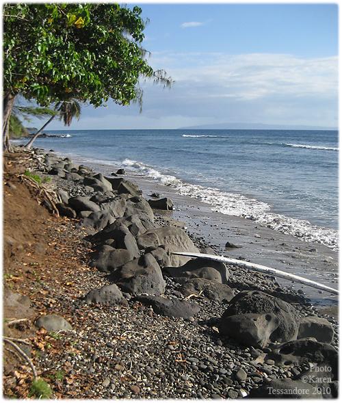 Beach_3876