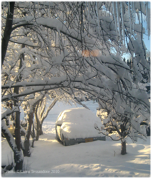 Snow_4271